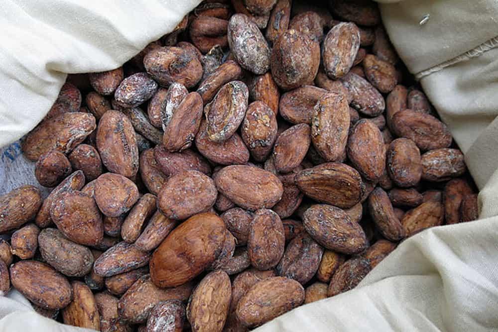 Cocoa - Alternative commodity