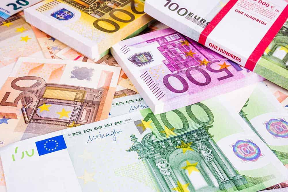 Euro rises