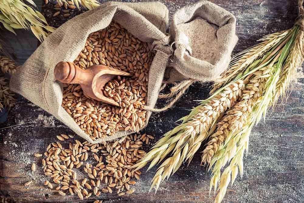 US grain futures