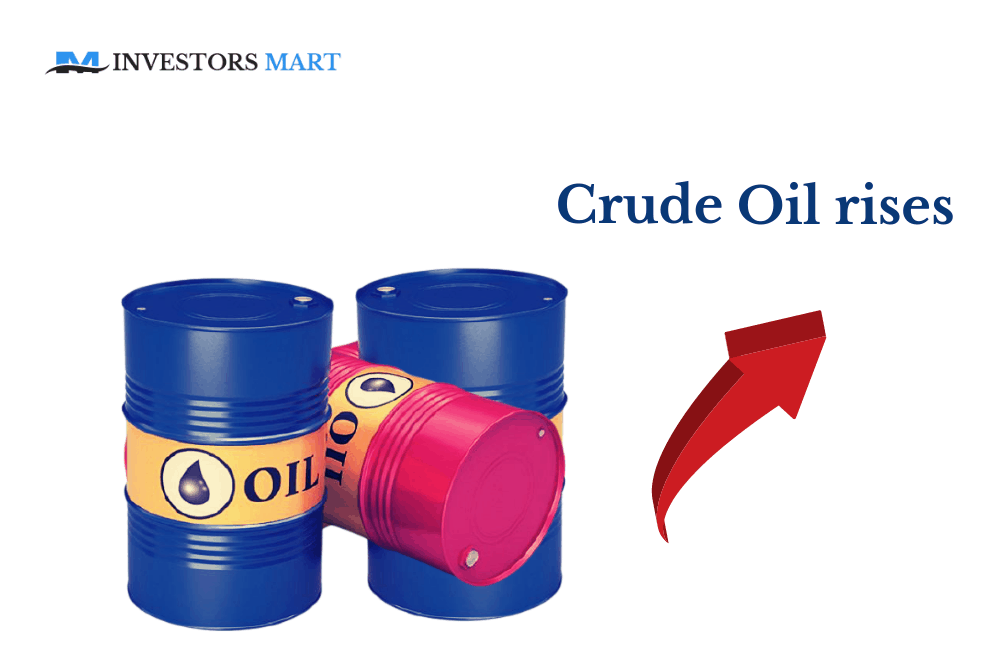 Oil rises as crude inventories fall sharply